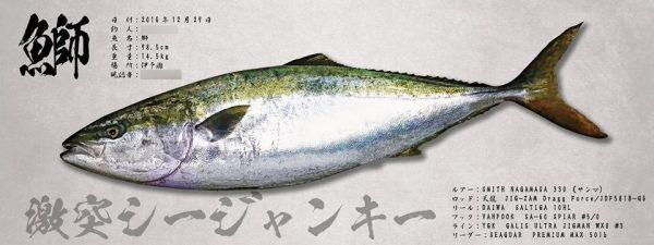 釣りチームなどのロゴがありましたら是非魚拓に