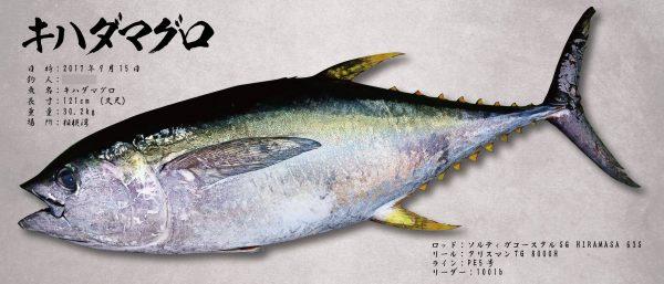 大型魚も業界最安で制作できます