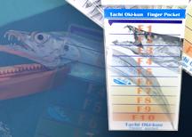 太刀魚専用スケール