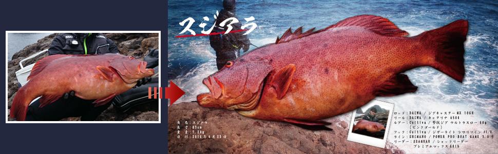 デジタル魚拓イメージ2