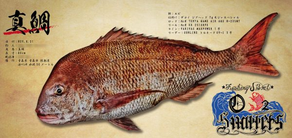80cm鯛魚拓
