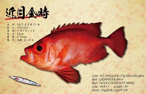 チカメキントキ魚拓