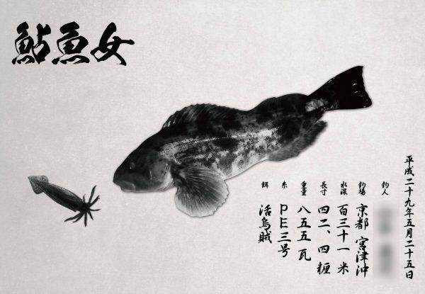 アイナメ魚拓