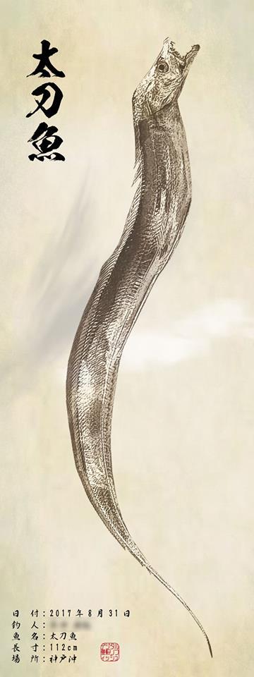 太刀魚-掛け軸