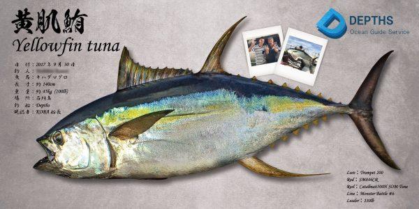 キハダマグロ魚拓